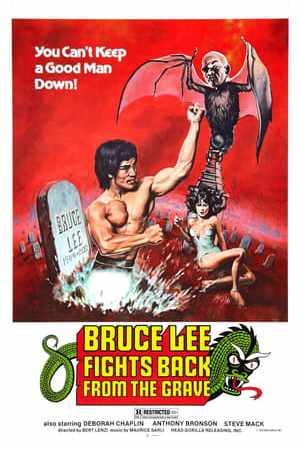 Image Bruce Lee Fights Back from the Grave