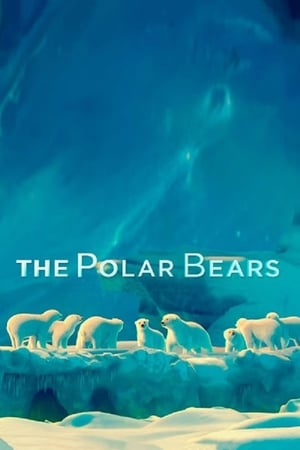Image The Polar Bears