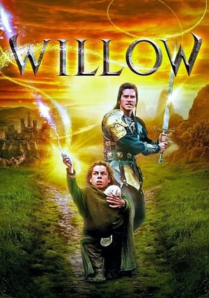 Image Willow