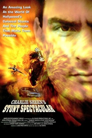 Image Charlie Sheen's Stunts Spectacular