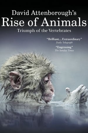 Image David Attenborough's Rise of Animals: Triumph of the Vertebrates