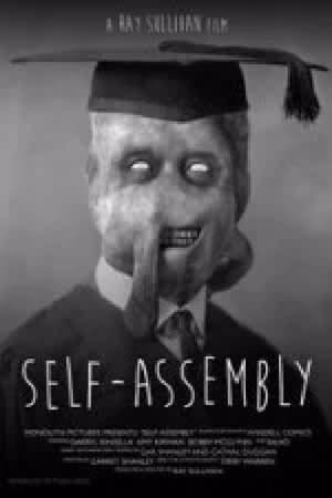 Image Self-Assembly