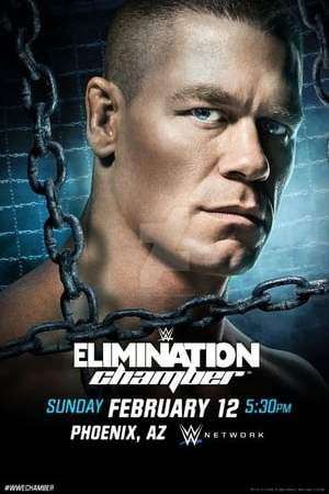 Image WWE Elimination Chamber 2017