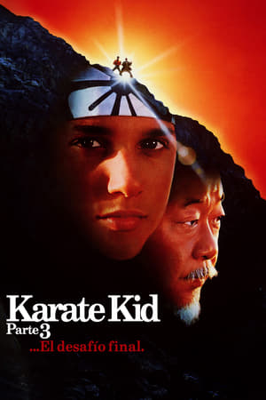 Ver Online Karate Kid III: El desafío final