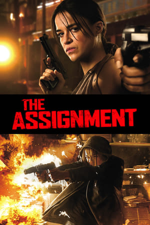 Image The Assignment