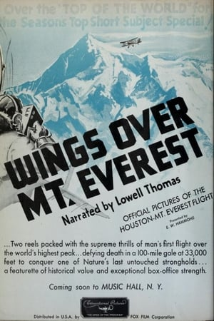 Image Wings Over Everest