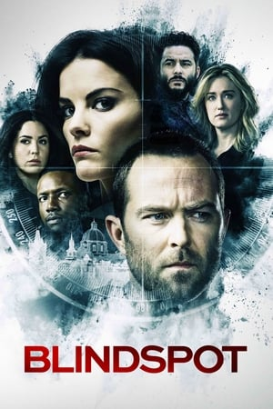 Poster Blindspot Season 5 2020