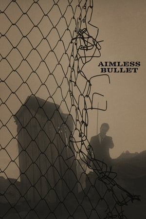 Image The aimless bullet
