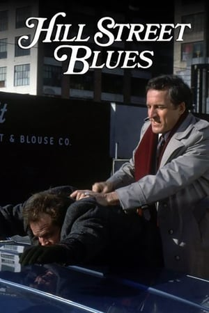 Image Hill Street Blues