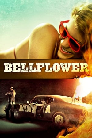 Image Bellflower