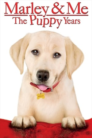Image Marley & Me: The Puppy Years