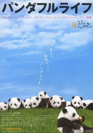 Panda Days