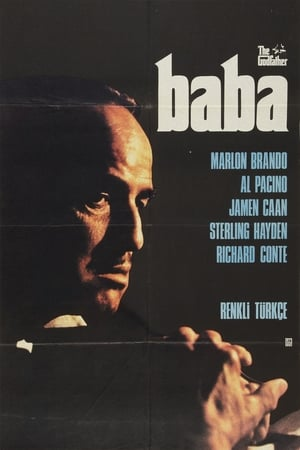 Image Baba-The Godfather