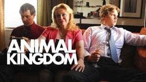 images Animal Kingdom