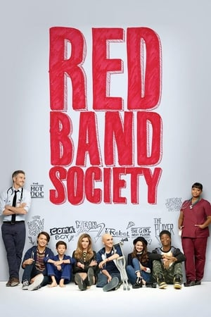 Poster Red Band Society 2014