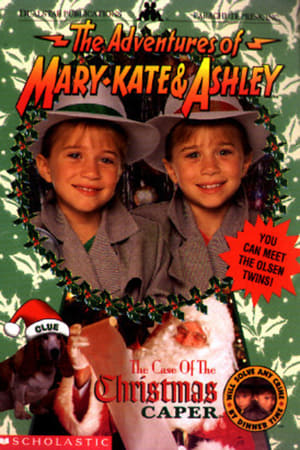 Image The Adventures of Mary-Kate & Ashley: The Case of the Christmas Caper