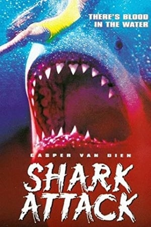 Image Shark Attack