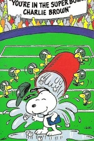 Image You're in the Super Bowl, Charlie Brown