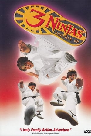 Image 3 Ninjas Knuckle Up