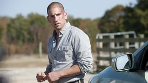 Watch The Walking Dead 2x12 Online