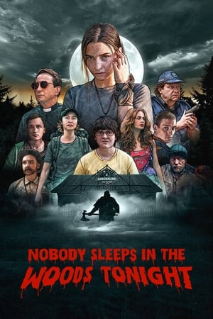 Poster Nobody Sleeps in the Woods Tonight 2020