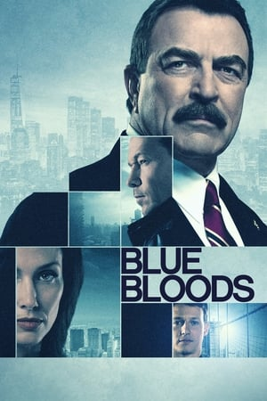 Poster Blue Bloods 2010