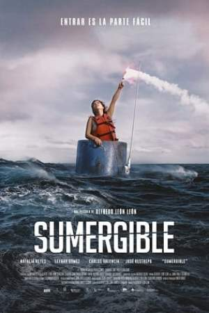 Image Submersible