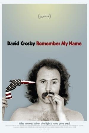 Ver Online David Crosby: Remember My Name