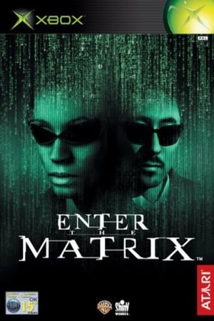 Image Making 'Enter the Matrix'