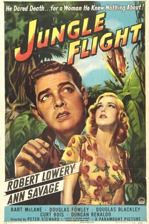 Image Jungle Flight