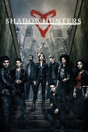 Poster Shadowhunters 2016