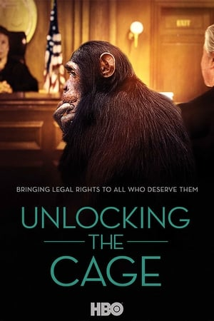 Image Unlocking the Cage