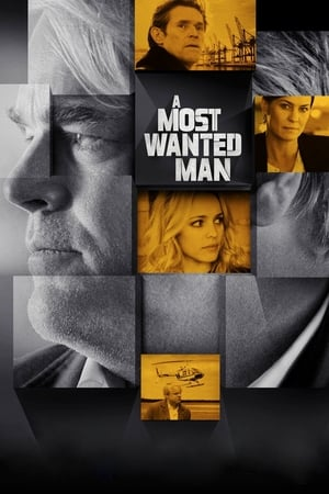 Image A Most Wanted Man