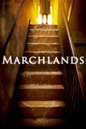 Image Marchlands
