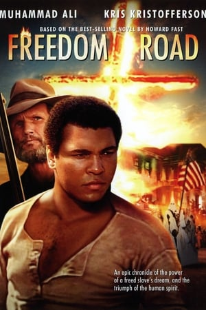 Image Freedom Road