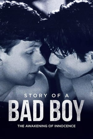 Image Story of a Bad Boy