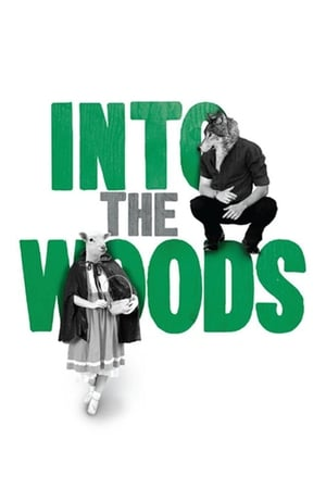 Image Digital Theatre: Into the Woods