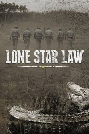 Image Lone Star Law