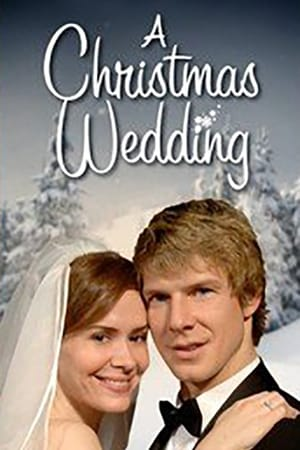 Image A Christmas Wedding