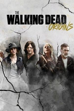 The Walking Dead: Origins 1x1 poster