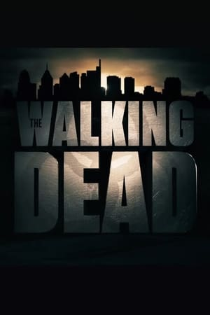 Poster Untitled 'The Walking Dead' Film 2020