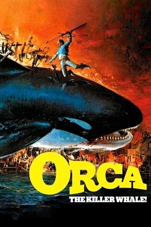 Image Orca: The Killer Whale