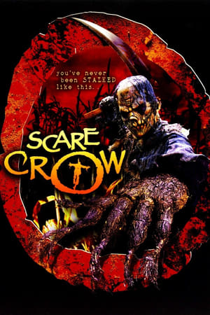 Poster Scarecrow 2002