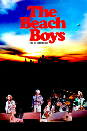The Beach Boys Live At Knebworth 1980