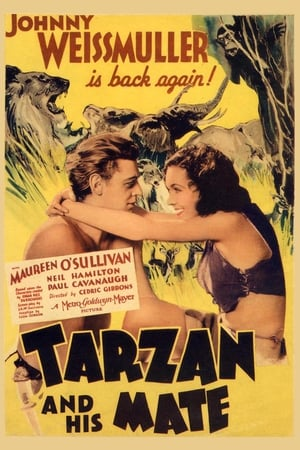 Image Tarzan and His Mate