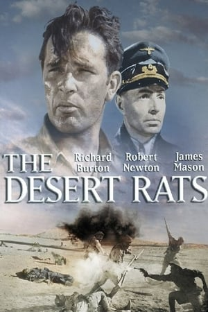 Image The Desert Rats