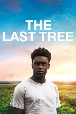 Ver Online The Last Tree