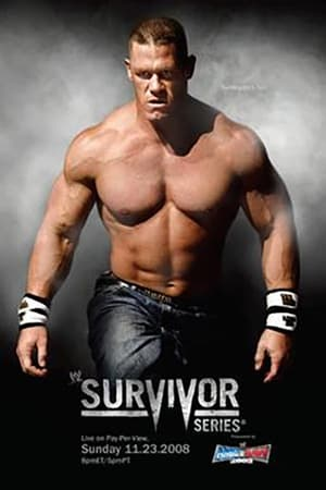 Image WWE Survivor Series 2008
