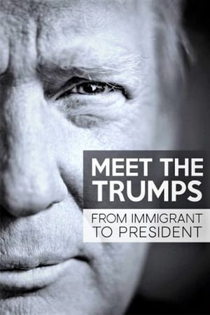 Image Meet the Trumps: From Immigrant to President
