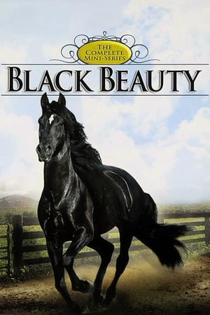 Image Black Beauty